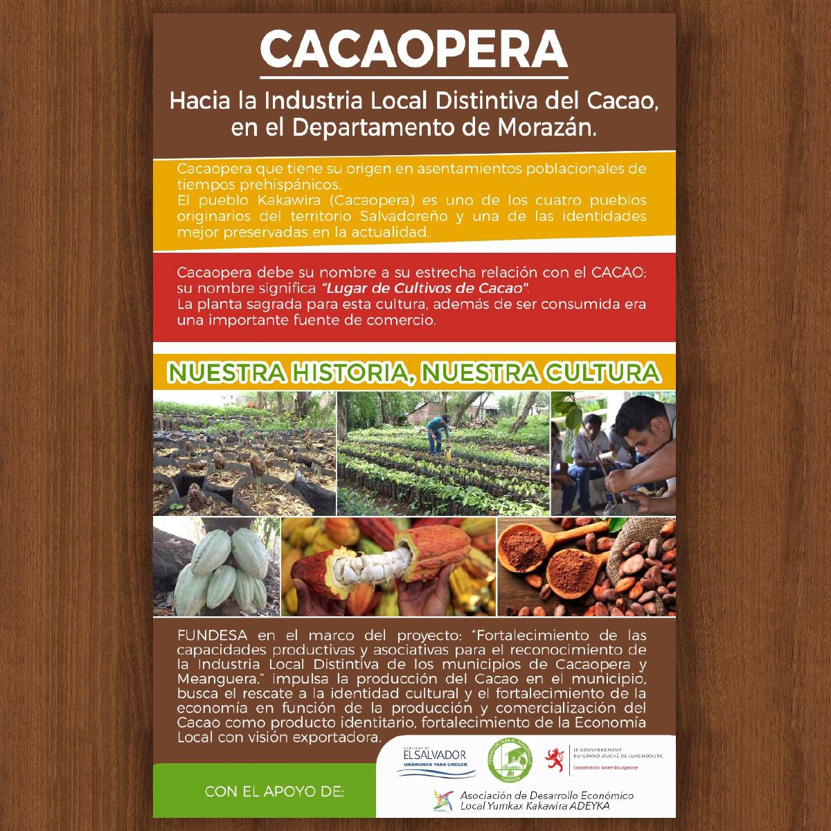 CACAOPERA HACIA LA INDUSTRIA LOCAL DISTINTIVA DEL CACAO, EN EL DEPARTAMENTO DE MORAZÁN