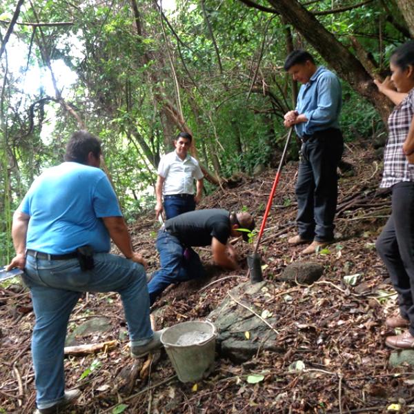 Establecimiento de parcelas agroforestales de Cacao en el Municipio de Cacaopera.
