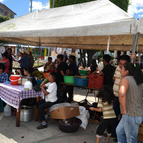 Consolidación de plaza de Mercado en el Municipio de Cacaopera