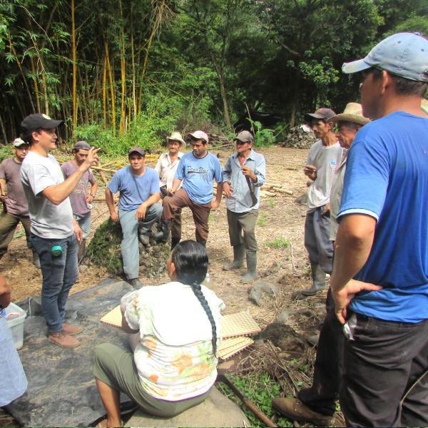 Desarrollo de Escuela de Campo Agricola(ECA) Volcancillo, Carolina - AACID