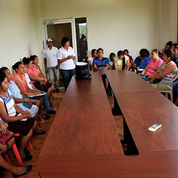 Proceso formativo dirigido a comités municipales de mujeres.