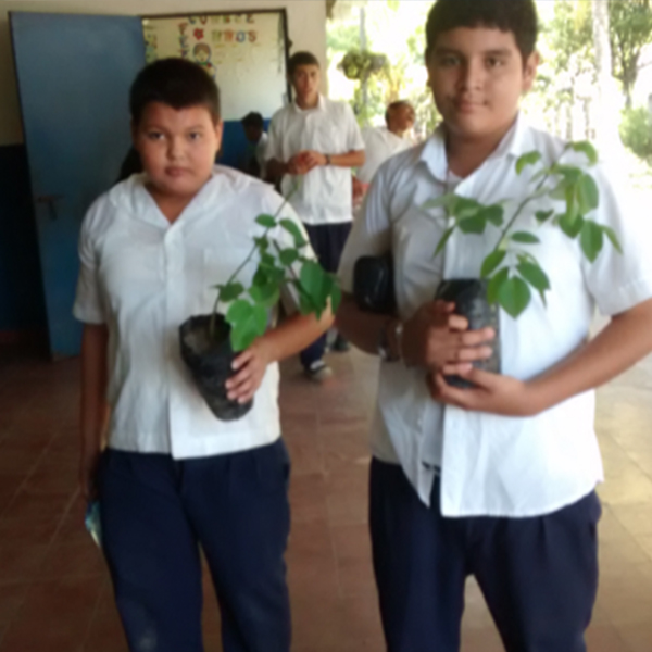 Entrega de arboles forestales a estudiantes de centros escolares